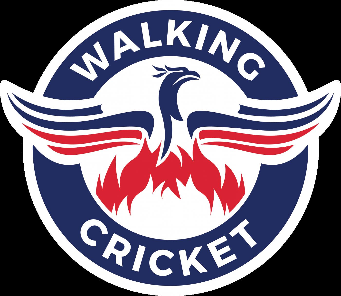 Walking Cricket Rules
